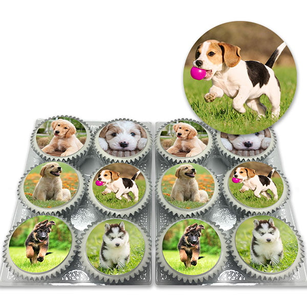 Cute Puppy Cupcakes Delivered